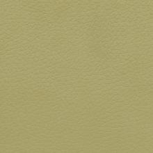 Primo Fiore Verde Matras UA73 sp.18