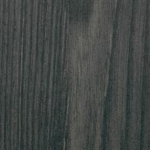 Tivoli Rodano S141 sp.22