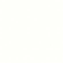 SR 209/01 Bianco Lucido